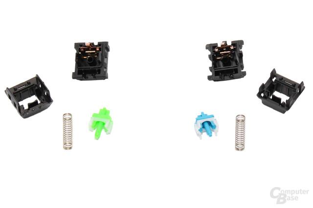 Unterschiede nur im Detail: Razer Green (links) und MX Blue (rechts)