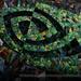GeForce GTX 900: Nvidia überspringt die GeForce GTX 800 im Desktop