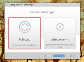Mega Sync-Client Installation