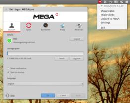 Mega Sync-Client Einstellungen