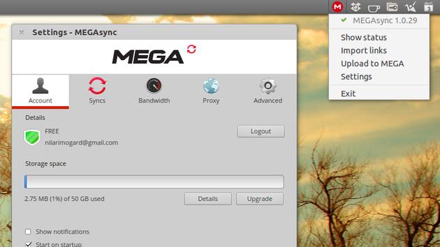 Online-Speicher: MEGA bekommt offenen Client für Linux