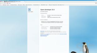 Opera 25 für Linux