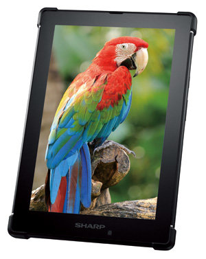 Das erste Tablet mit MEMS-IGZO-Display