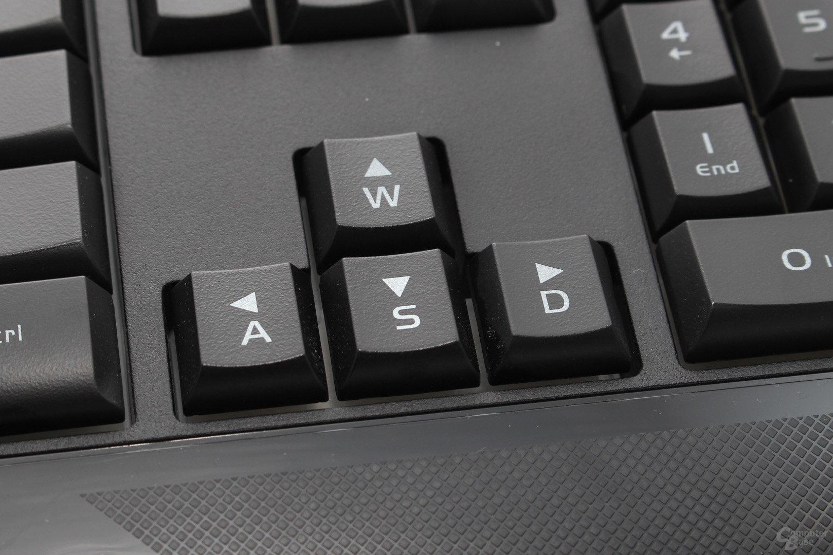 """Die Funktion von """"WASD"""" und den Pfeiltasten kann vertauscht werden"""