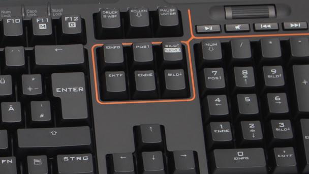 Asus Strix Tactic Pro im Test: Eulenform und Makro-Taster für Spieler