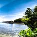 AMD Radeon R9 390: AMDs Fiji gibt erste Lebenszeichen von sich