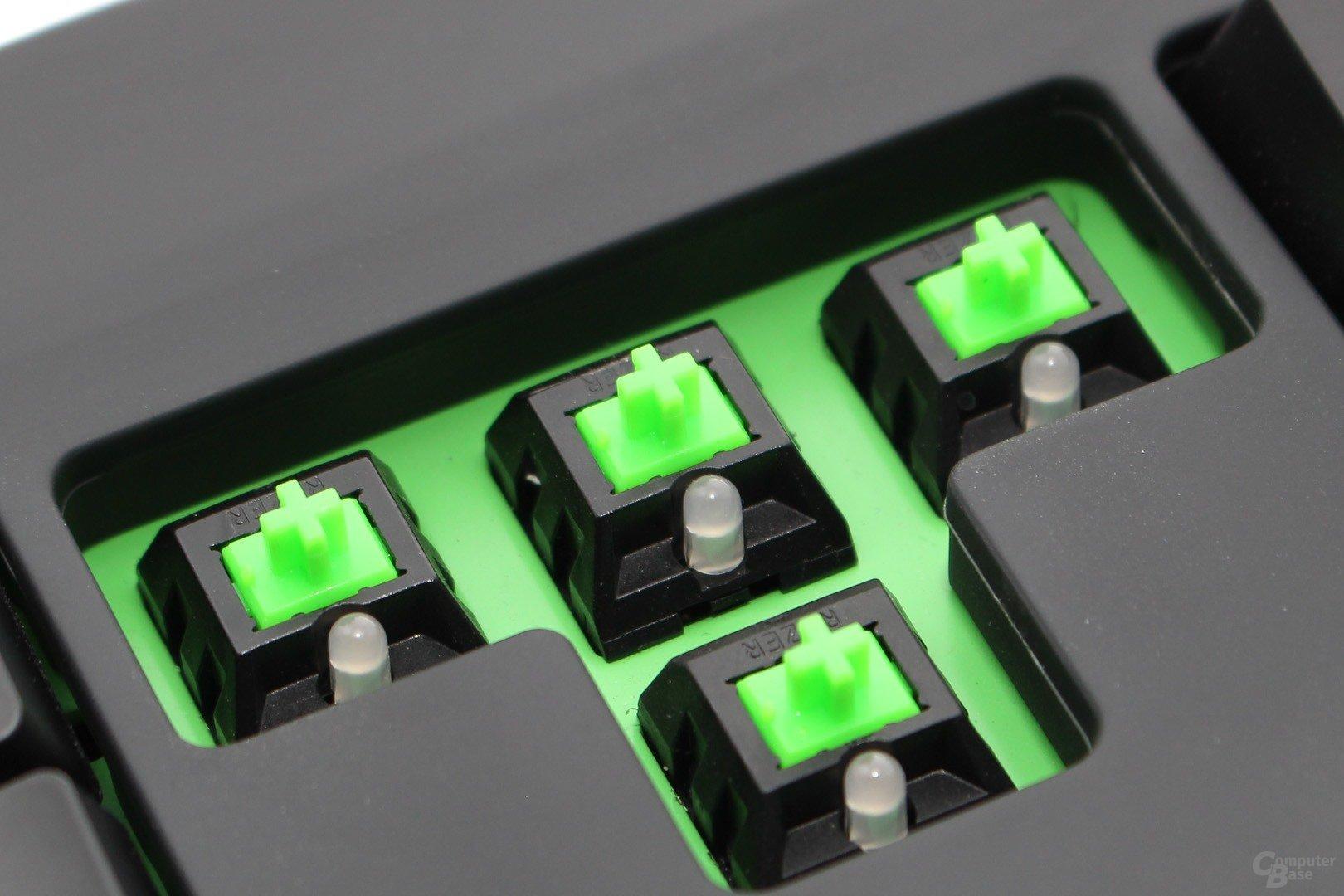Zum Vergleich: Razer Green mit grünen LEDs der Black Widow Ultimate 2014