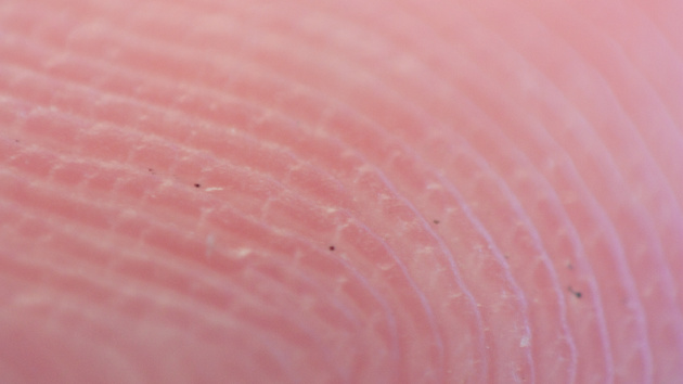 31C3: Hacks von Fingerabdruck-Biometrie und UMTS-Netzen
