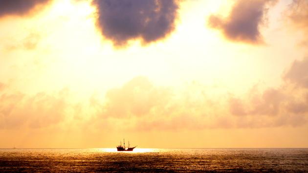 The Pirate Bay: Die populäre Tauschbörse ist wieder online