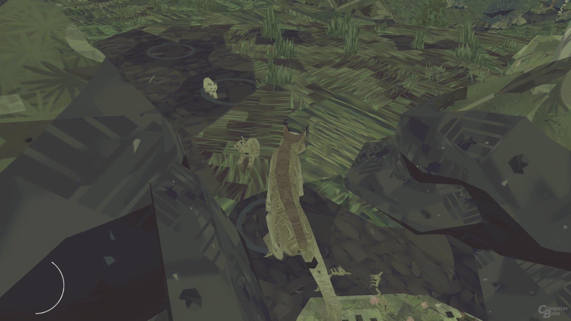 Shelter 2 im Test