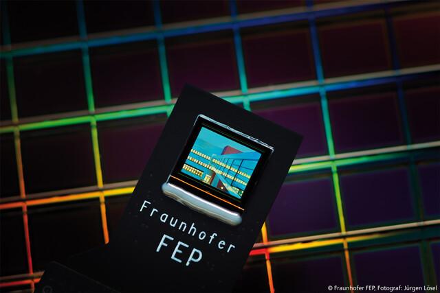 Bidirektionales OLED-Mikrodisplay