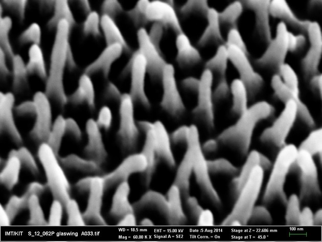 Die unregelmäßigen Nanosäulen unterm Rasterelektronenmikroskop