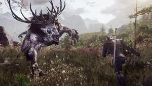 Witcher 3: GameWorks-Video und ein Nvidia-Treiber zum Rollenspiel