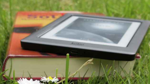 Selfpublishing: Autoren organisieren fingierte Rezensionen über Facebook