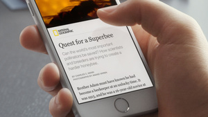 Facebook: Auf Instant Articles folgen Micropayments