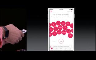 Apple Music – Vorlieben festlegen