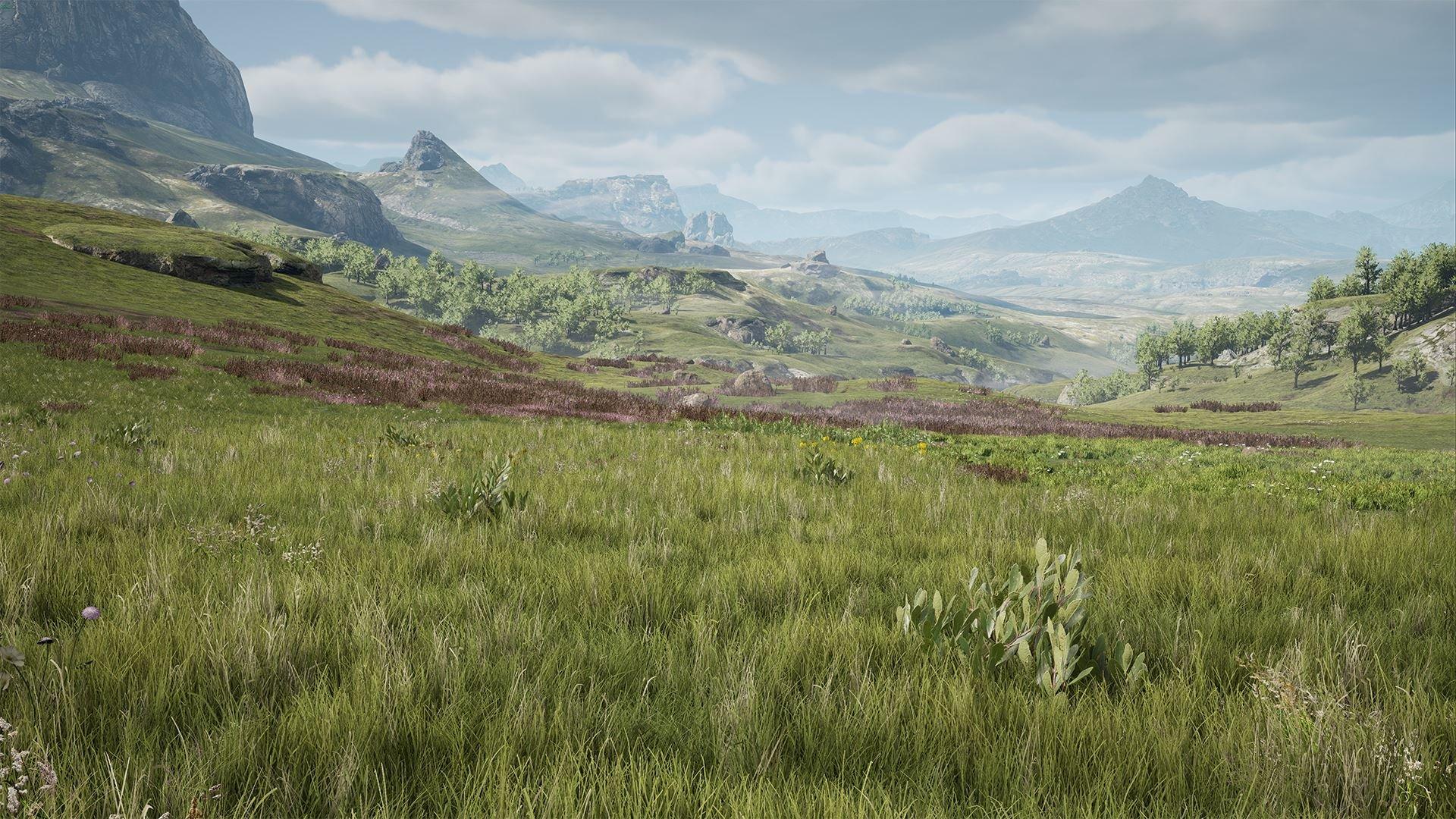 Graslandschaften