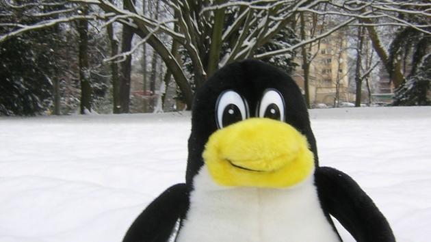 Linux: Linus Torvalds zu den Chancen von Kdbus im Kernel