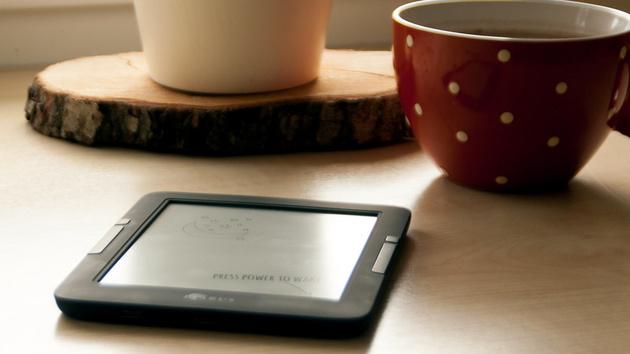 E-Book-Markt: Absatz von Verlagstiteln in den USA schrumpft weiter