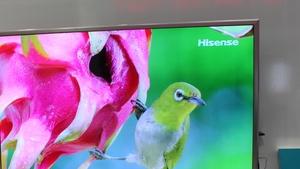 TV-Geschäft: Hisense übernimmt Sharp America für 23,7 Mio. Dollar