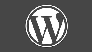 WordPress: Entwickler schließen sechs Sicherheitslücken