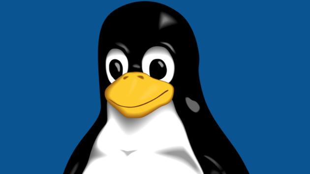 Freie Software: Linux und die Free Software Foundation feiern Geburtstag