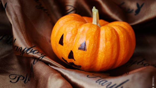 Halloween: Rabattaktionen auf Steam und GoG gestartet