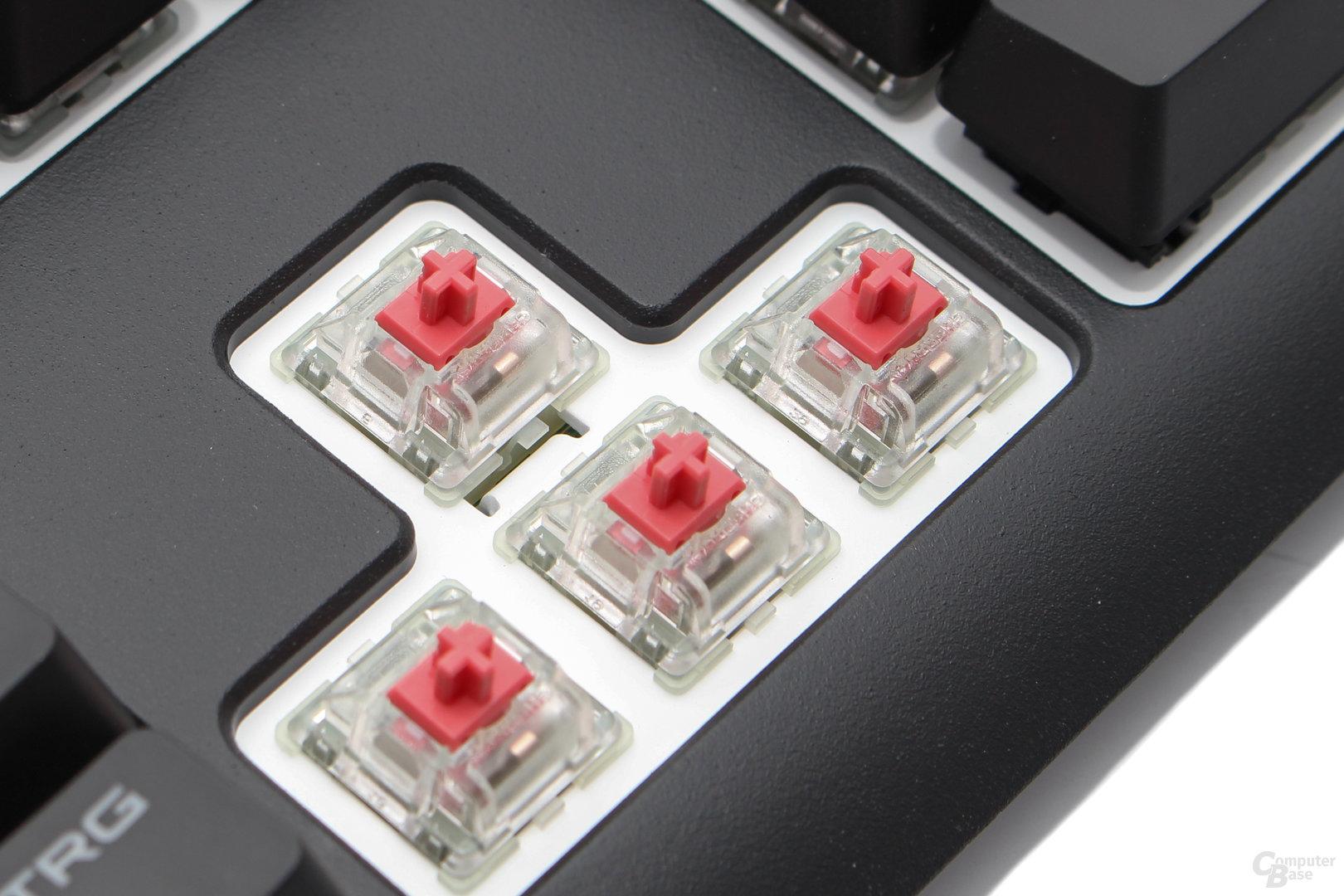 Cherrys MX-Taster sollen in allen Varianten 50 Millionen Übertragungen absolivieren