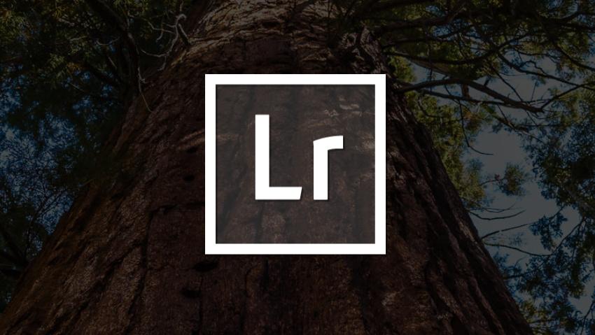 Lightroom 2.0 für Android: Neue Funktionen – aber auch Einschränkungen