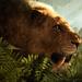 Far Cry Primal im Test: Die Steinzeit als bunter Themenpark zum Spaß haben