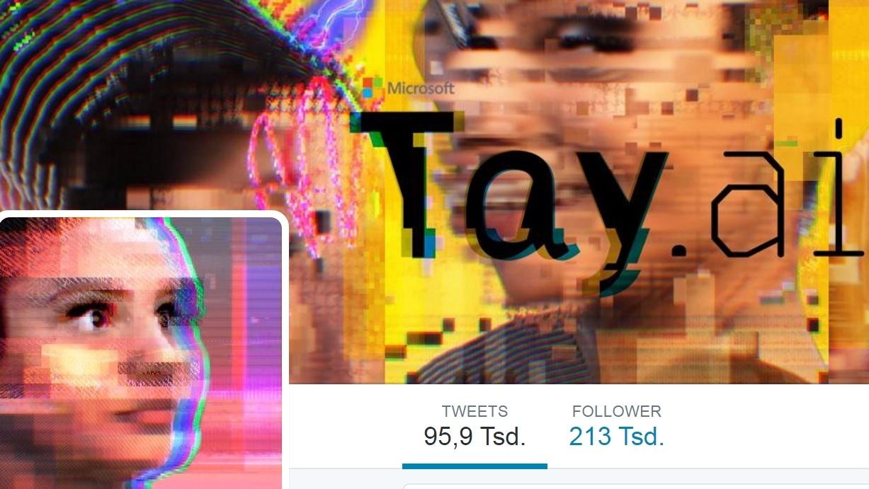 Analyse: Microsofts Tay-Bot und der Hass im Netz