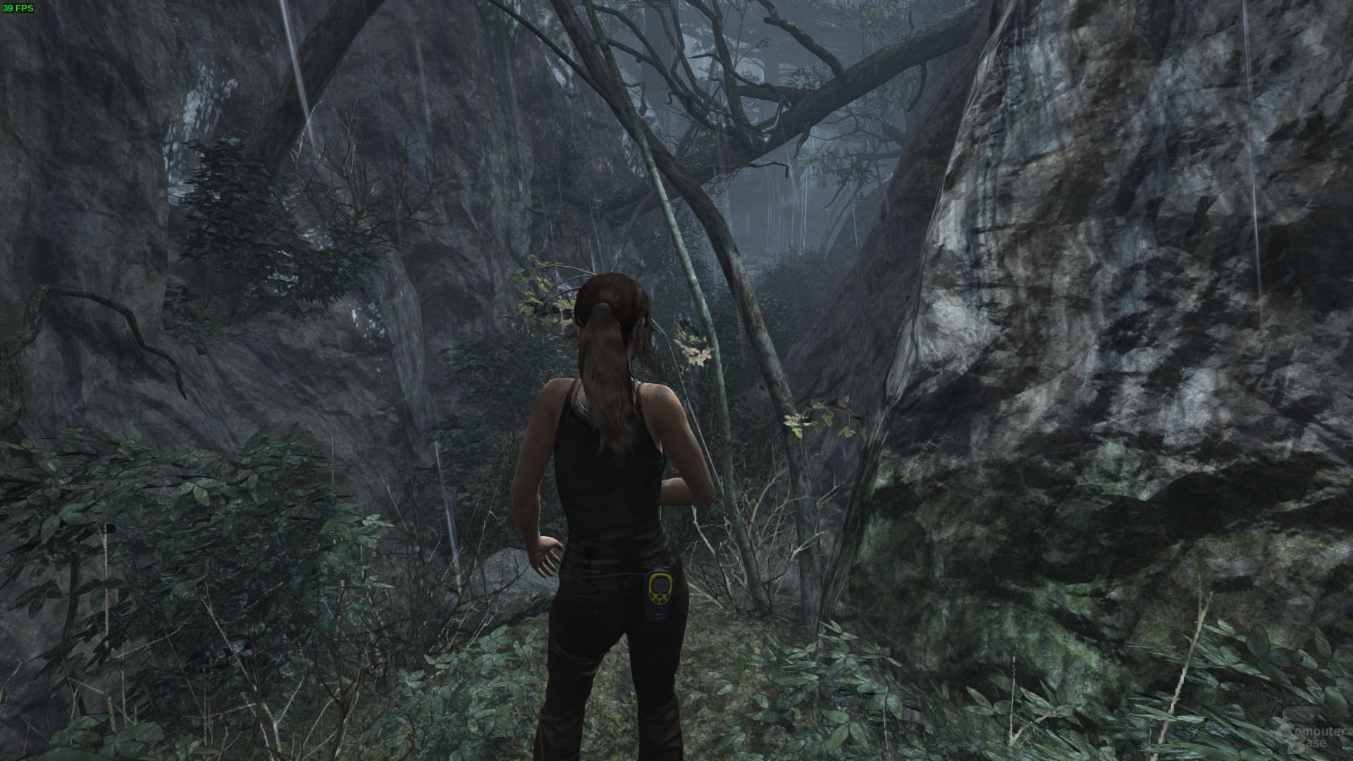 Tomb Raider unter Linux