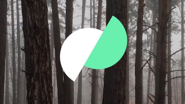 Motion Stills für iOS: Google-App wandelt Live Photos in stabilisierte GIFs um