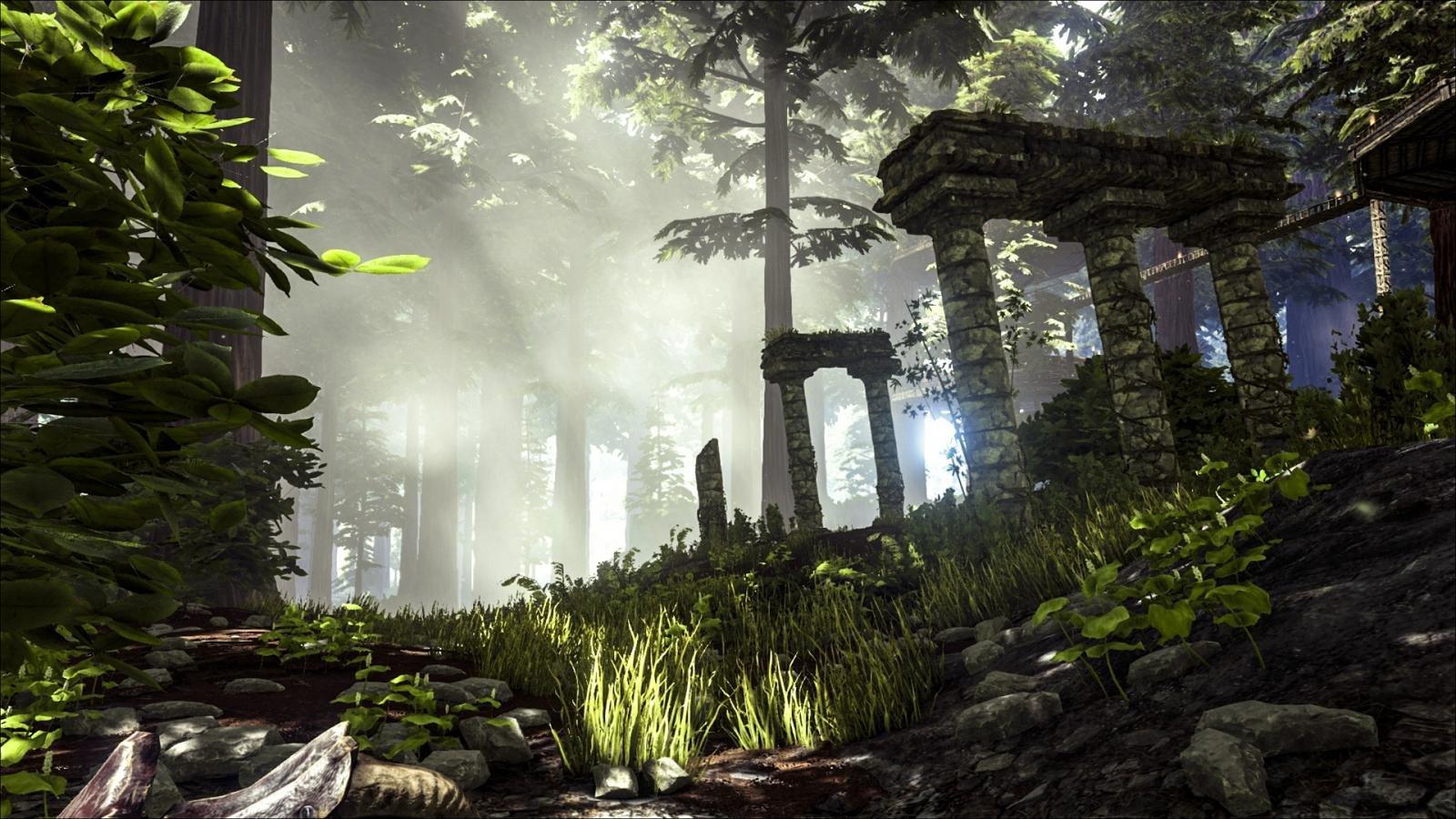 Das neue Redwood Biom