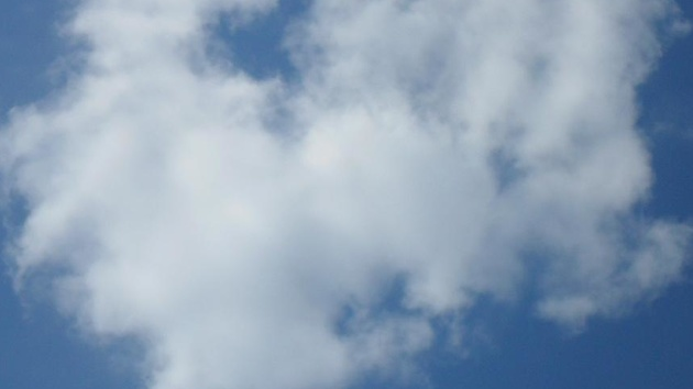 Cloud-Office: Jeder Sechste nutzt Software über das Internet