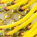 Unitymedia: Schwachstelle ermöglicht Übernahme des Routers EVW3226