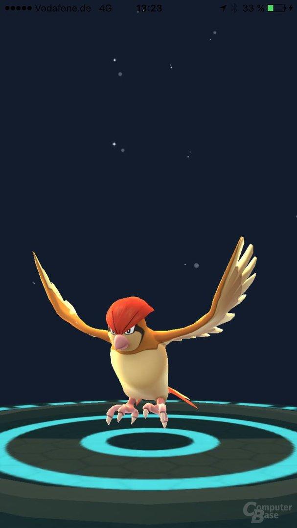 Pokémon Go – Pokémon weiterentwickelt