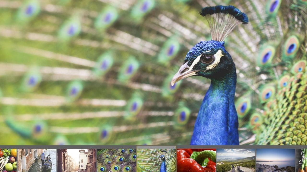Philips Ultra Wide Color: Die Technik hinter den neuen Monitoren
