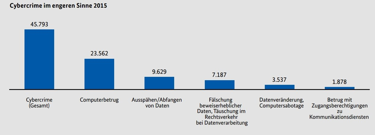 Cybercrime-Statistik im Jahr 2015