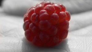 Raspberry Pi: Raspbian erhält ein neues Gesicht