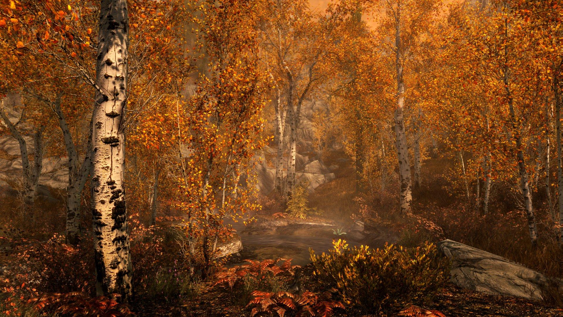 Skyrim in 4K auf der PS4: Fall Forest