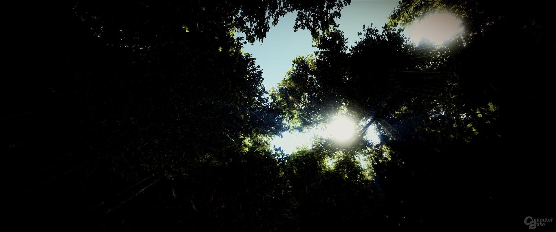 ARK: Survival Evolved – Beinahe Fotorealismus in hoher Auflösung