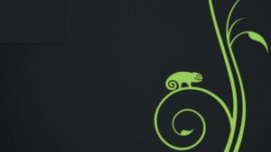 OpenSUSE: In 64 Bit für Raspberry Pi und ohne AMD-Treiber fglrx