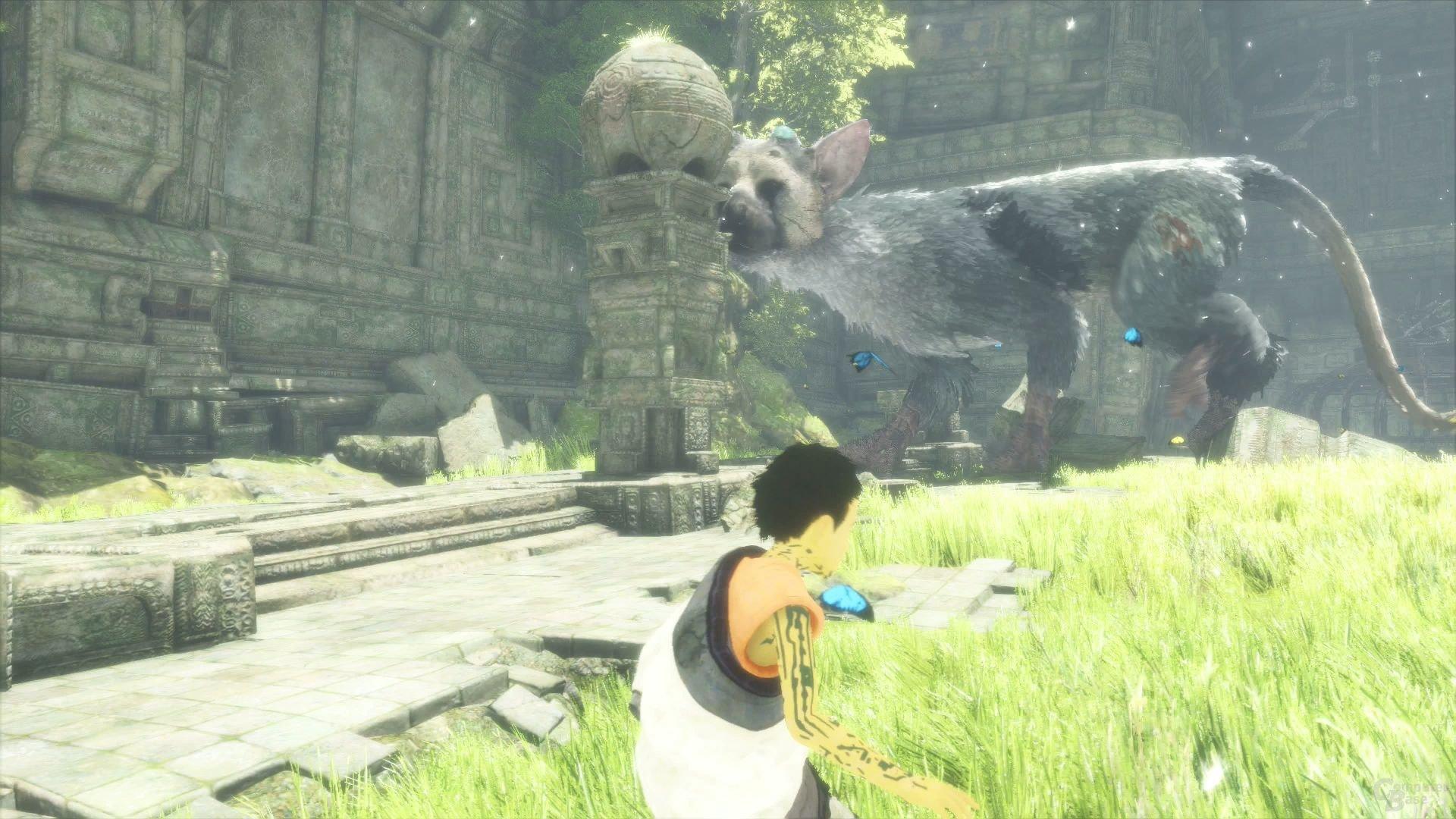 Die Illusion eines lebendigen Begleiters ist immer einen Blick wert (PlayStation 4)