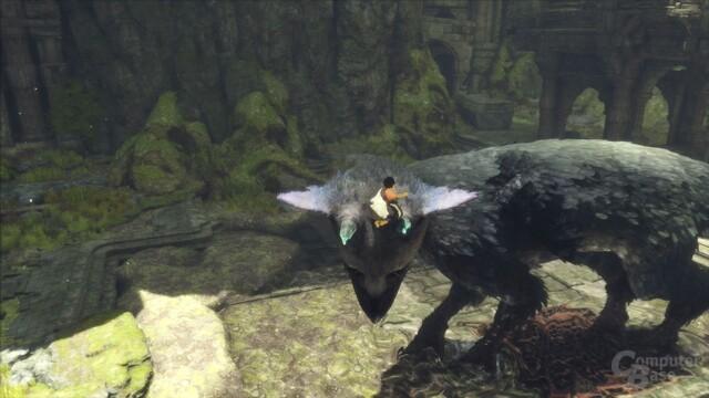 Trico ist Rätsel und Lösung zugleich (PlayStation 4)