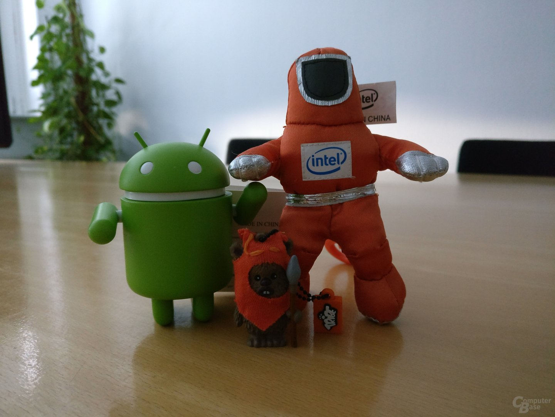 OnePlus 3T (f/2.0, ISO 2500, 1/17s)