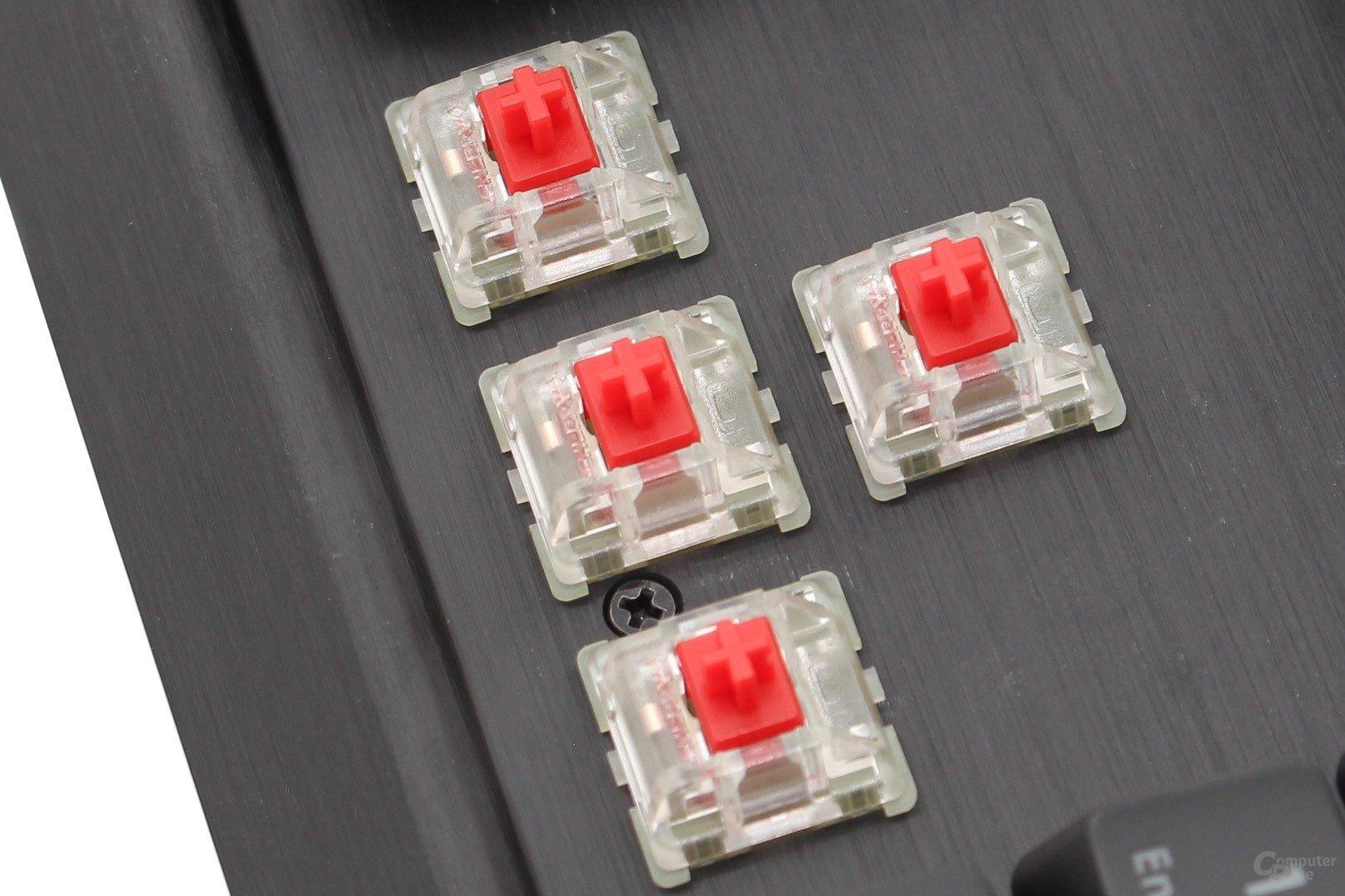 Bei Cherrys MX-RGB-Tastern wird das Gehäuse transparent