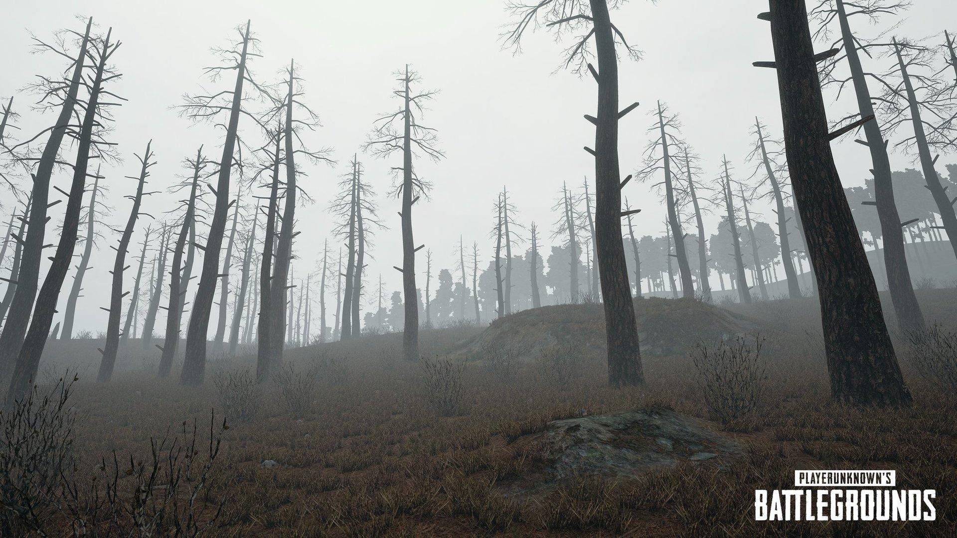 Screenshot vom neuen Wettereffekt mit Nebel