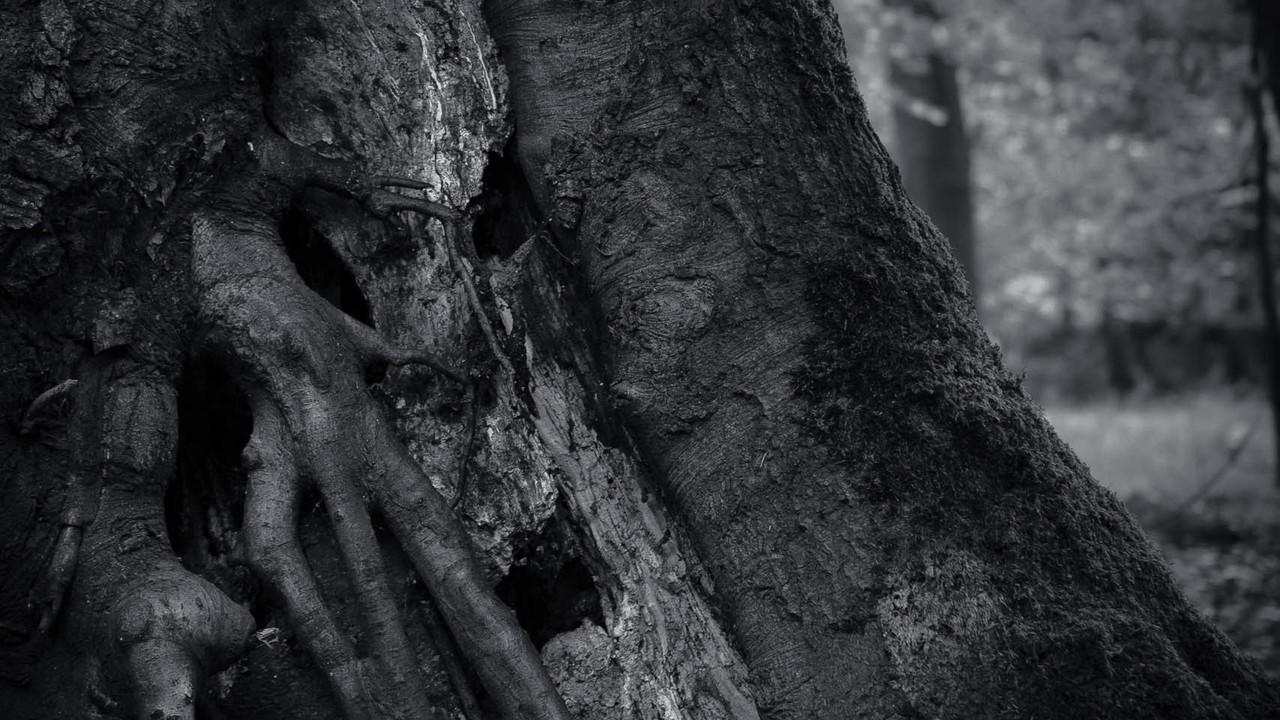 """Community: Fotowettbewerb zum Thema """"Alltagsmomente"""""""