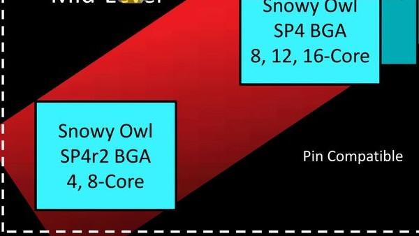 Snowy Owl: AMDs 16-Kern-CPUs im BGA-Format kurz vor dem Start